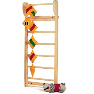 PHIL gymnastic climbing bars